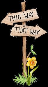 Rationale Entscheidungen geht das oder wie gehen Kaufentscheidungen rationalen Entscheidungen wirklich. Vertrieb mit Erfolgsquote Entscheidung innuitiv?